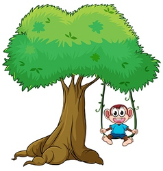 Monkey on a swing vector image vector image