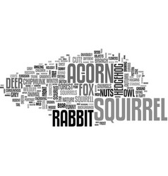 Squirrel word cloud concept vector