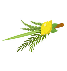 Sukkot set of herbs and spices of the etrog lulav vector