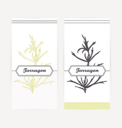 Tarragon in outline and silhouette style vector