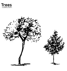 Trees collection ink trees silhouettes vector