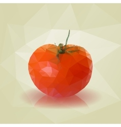 Red low poly triangular tomato vector