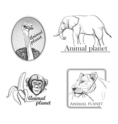 Animal planet Logo Symbol For Your Design vector image