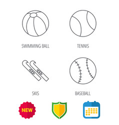 Swimming ball tennis and baseball icons vector
