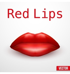 Beautiful luscious red lips vector