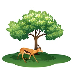 A deer under the tree vector