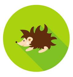 Hedgehog circle icon vector