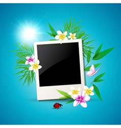 Summer background with photo vector