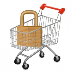 Shopping cart with key vector