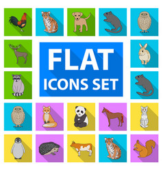 Realistic animals flat icons in set collection for vector