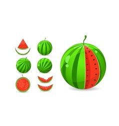 Whole and sliced watermelon set vector