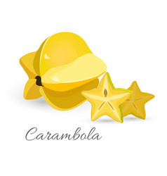 carambola exotic fruit realistic vector image