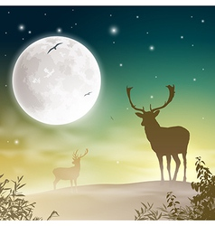 Male Stag Deer vector image vector image