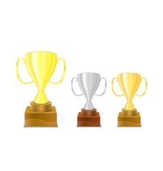 Gold and silver trophy cups icon vector