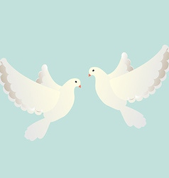 White pigeons vector image