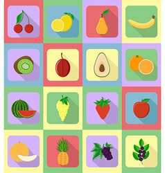 fruits flat icons 19 vector image