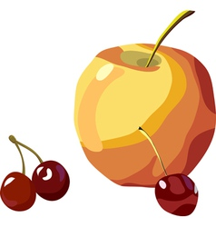 Apple and cherry vector