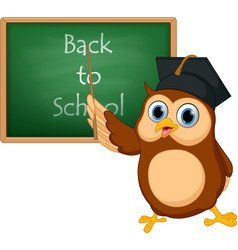 Owl cartoon with chalkboard vector