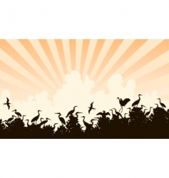 Bird colony vector
