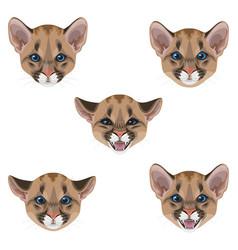 Little puma muzzle set vector
