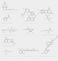 Skeletal vitamin formula vector