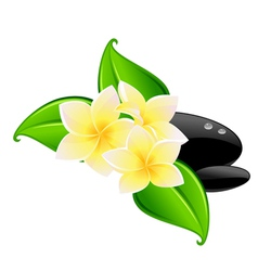 Spa flower symbol vector