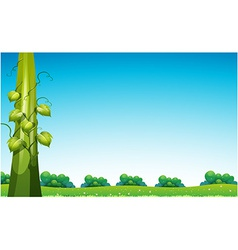 Beanstalk in field vector
