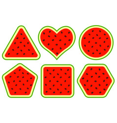 abstract watermelon shapes vector image vector image