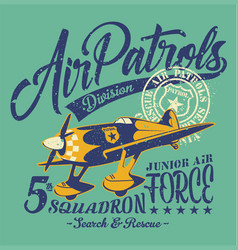 air patrols squadron vector image