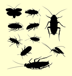 cockroach insect animal silhouette vector image