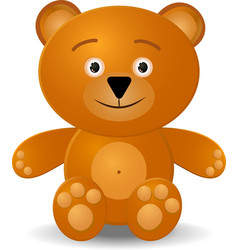 teddy bear toy vector image
