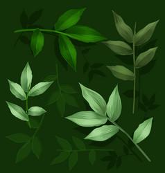 Green leaf set vector