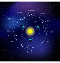 Zodiac signs Constellations vector image