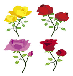 colored roses vector image vector image