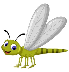 Dragonfly cartoon vector image