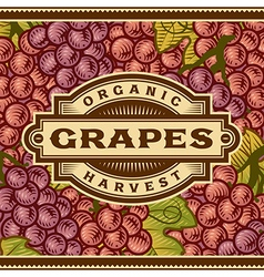 Retro Grapes Harvest Label vector image