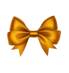Golden satin gift bow isolated on white vector