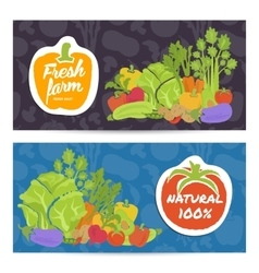 Fresh farm food horizontal flyers set vector