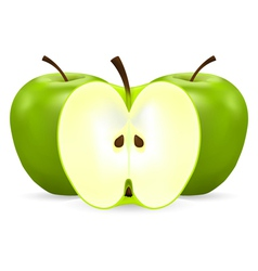 Two whole and half green apples vector