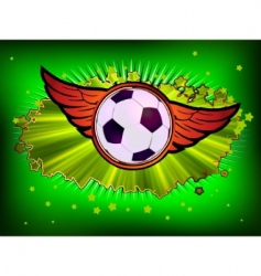 grunge soccer ball  vector image