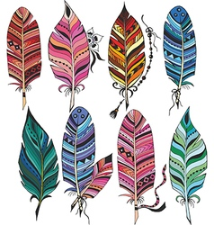 Big set of colorful feathers vector