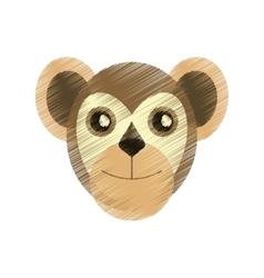 Drawing capuchin primate brazil fauna vector
