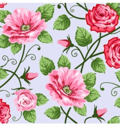 romantic roses vector image