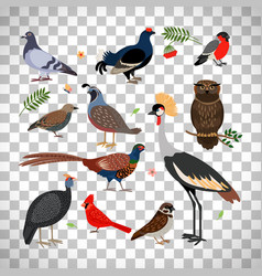 birds icons on transparent background vector image vector image