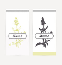 Hand drawn hyssop in outline and silhouette style vector