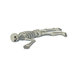 Laying skeleton vector