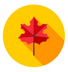Maple leaf circle icon vector