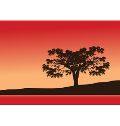 Silhouettes of single trees with red background vector