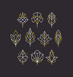 Nature leaves and trees symbols vector