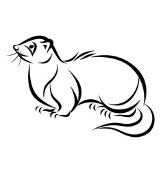 Line ink ferret vector
